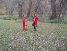 b_150_100_16777215_00_images_fotoalbum_2010_dscn3745.jpg