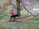 b_150_100_16777215_00_images_fotoalbum_2010_dscn3771.jpg