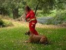 b_150_100_16777215_00_images_fotoalbum_2012_zkousky2012_25_8_zzp2_dscn9518.jpg
